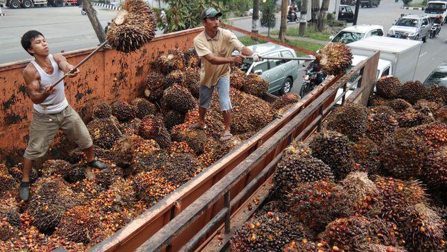 Pengamat: Indonesia Perlu Ikut Langkah Trump Keluar dari TPP