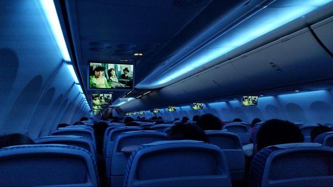 United Airlines Minta Maaf Atas Insiden Penurunan Penumpang
