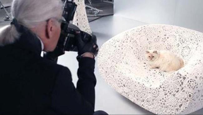Dalam bukuThe Private Life of a High-Flying Fashion Cat, terlihat Choupette sedang asyik bermain iPad dan menghadiri jamuan makan bersama Lagerfeld.(Dok. Karl Lagerfeld)