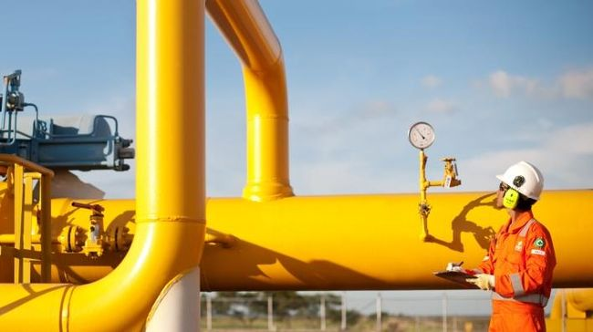 Pemerintah Mulai Hitung Harga Gas Ideal untuk Teluk Bintuni