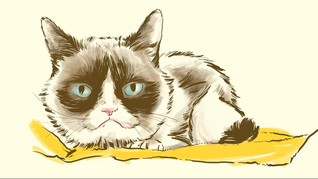 Bintang Meme Grumpy Cat Mati Tinggalkan Jutaan Fan