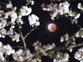 Misteri Lahirnya Bulan Terpecahkan