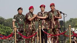 Citarum, Antara 'Perang' Doni Monardo dan Taktik Jokowi