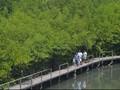 Kemenpar Sebut Ekowisata Baik untuk Lingkungan dan Masyarakat