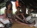 Pantau Kebakaran Hutan, Jokowi Akan Datangi Suku Anak Dalam