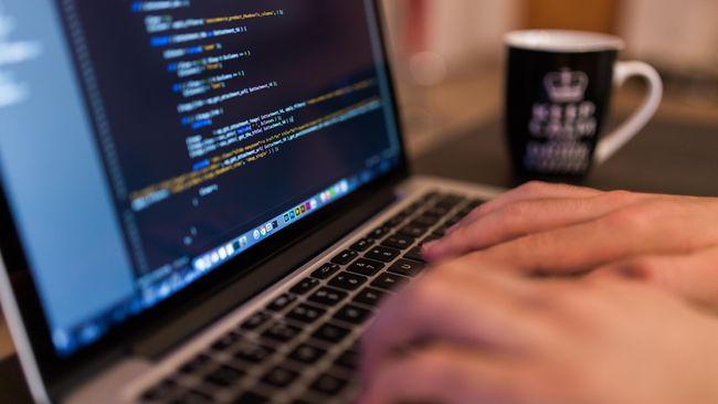 Indonesia Darurat Tenaga <i>Programmer</i>