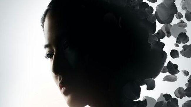 Hanung Bramantyo Andalkan Dian Sastro untuk Film Kartini 2.0