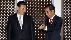 Jokowi Minta XI Jinping Permudah Impor Sarang Walet Indonesia