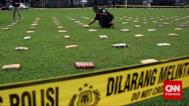Sebanyak 2,1 ton ganja 'dipamerkan' Direktorat Tindak Pidana Narkoba Badan Reserse Kriminal di Lapangan Bhayangkara Mabes Polri, Jakarta, Senin (11/5). Ganja-ganja ini dibawa jaringan pengedar dari Aceh ke Jakarta. (CNN Indonesia/Adhi Wicaksono)