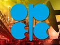 Indonesia Resmi Jadi Anggota Penuh OPEC