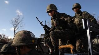 Korsel Kerahkan Tentara ke DMZ untuk Tangkap Babi Hutan Korut