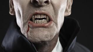 Heboh Serangan 'Vampir' di Selandia Baru