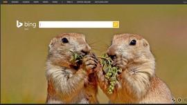 Mesin Pencari Bing Kini Disematkan Kecerdasan Buatan