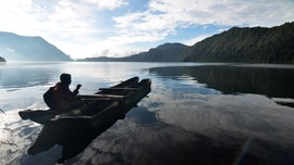 Tempat Ideal Melihat Kehidupan Alam Liar di Indonesia