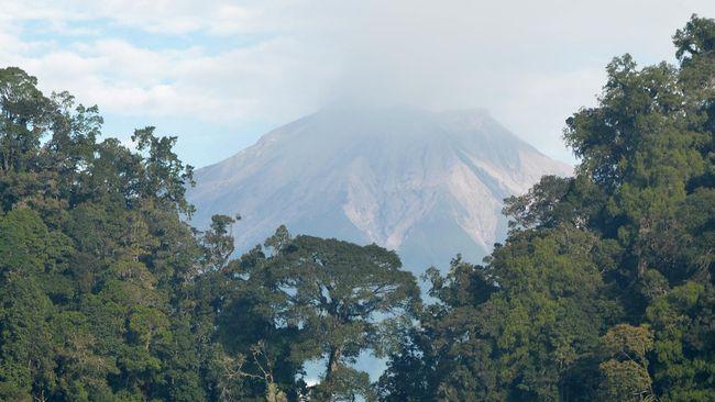 Pengelola Kerinci: Konversi Lahan Taman Nasional Meningkat