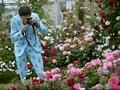 Chelsea Flower Show Pikat Ratu Inggris Sampai Kate Middleton