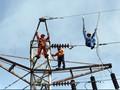 Demi Proyek 35 Ribu MW, PLN Rekrut 5000 Karyawan Setiap Tahun