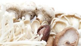 7 Manfaat Konsumsi Jamur, Tunda Penuaan Hingga Cegah Kanker