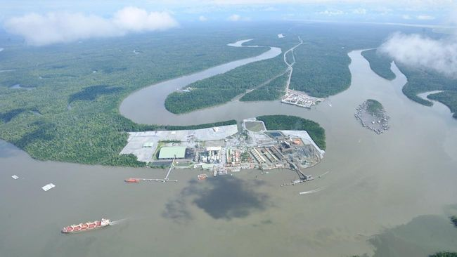 Transaksi Saham Freeport Tunggu Izin Pakai Kawasan Hutan