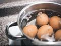 Penelitian IPEN: Telur Ayam di Tropodo Tercemar Racun