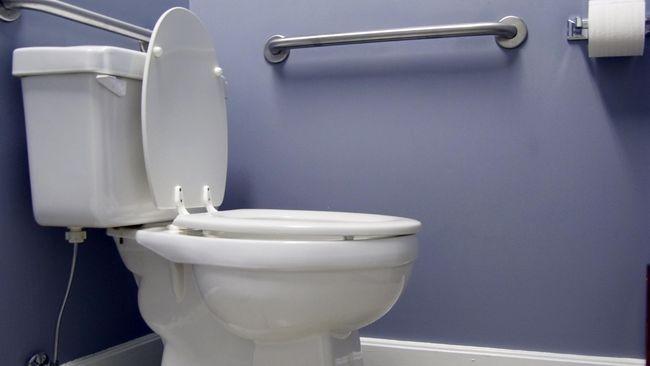Penyakit-penyakit yang Bisa Menular Lewat Dudukan Toilet