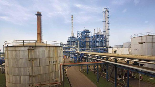 Kemenperin Minta Industri Petrokimia di Bintuni Masuk PSN