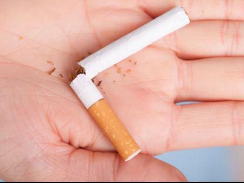 Mengurangi Rokok Tidak Berguna, Lebih Baik Berhenti Sekalian