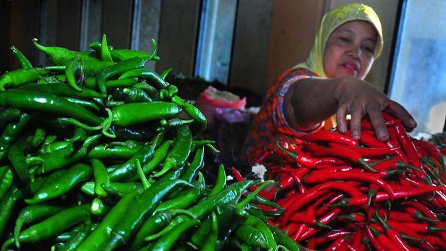FAO: Harga Pangan Dunia Capai Titik Terendah dalam 7 Tahun