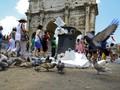 Mafia Sebabkan Roma Diambang Kehancuran