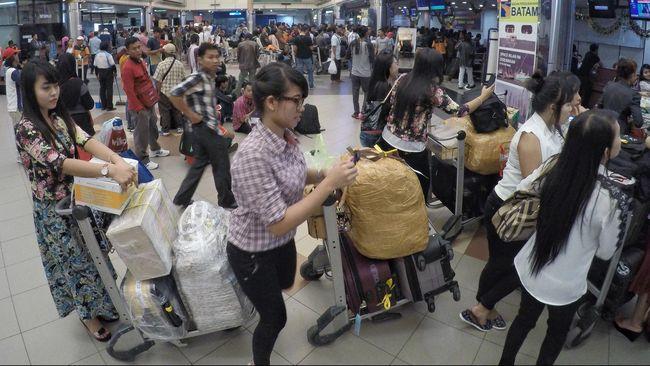 AP I Pede Menangkan Lelang Pengelolaan Bandara Hang Nadim