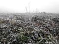 Papua Dilanda Hujan Es dan Terancam Kelaparan