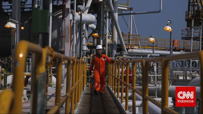 Bangun Pipa Gas, Pemerintah Perlu US$20,55 Miliar