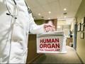 Pertama di Dunia, Cangkok Ginjal Lewat Vagina dengan Robot