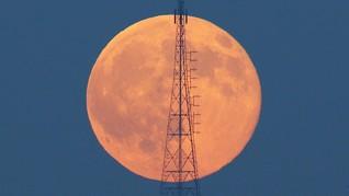 Malam Ini Langit akan Dihiasi Bulan Purnama 'Strawberry'