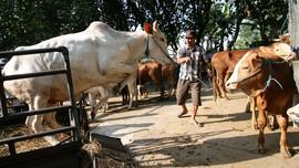 Pelaku Penimbunan Daging Sapi Bisa Terancam Lima Tahun Bui