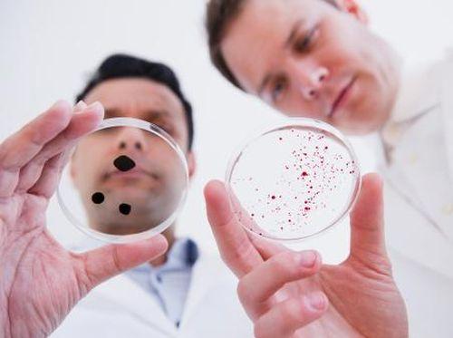 Bakteri Super Semakin Banyak, Bisakah Imunitas Manusia Bertahan?