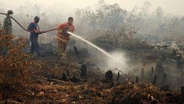 Sisihkan Dana untuk Guyur Api, BPDP Sawit Tunggu Instruksi