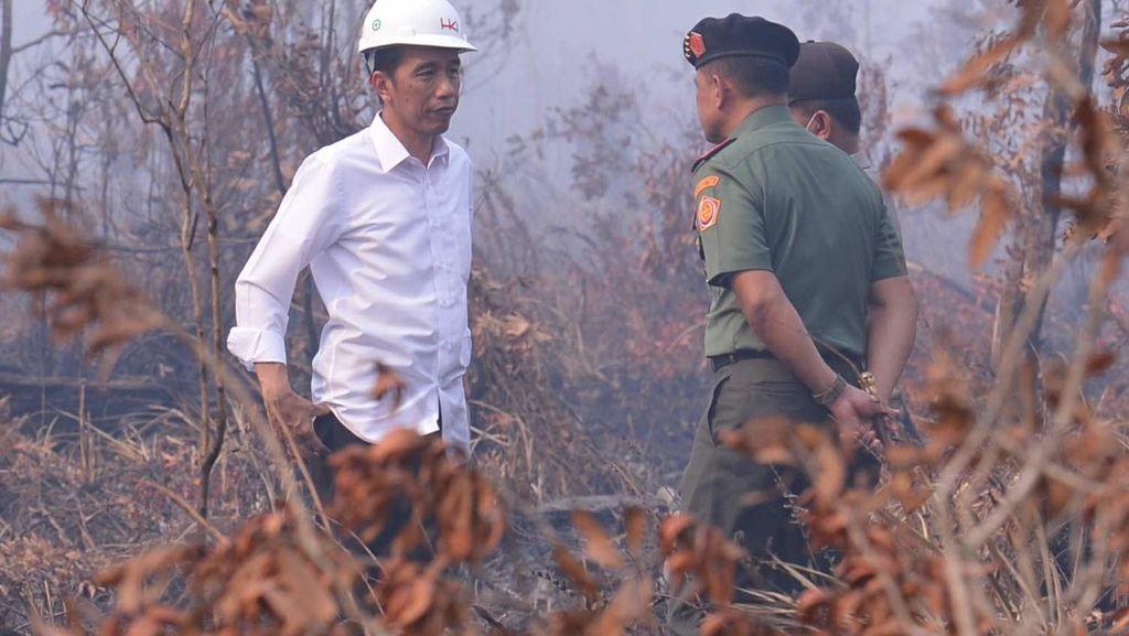 Jokowi Lihat Kebakaran Hutan, Malah Sepatunya yang Viral