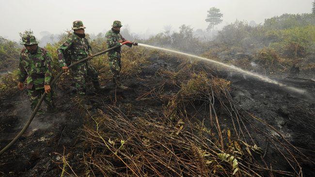 Politisi NasDem Heran Kebakaran Hutan Tak Sentuh Korporasi