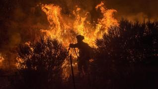 Klaim Asuransi Kebakaran California Diperkirakan Rp130 T