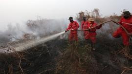 Kementerian Kehutanan Bekukan Empat Perusahaan Pembakar Hutan