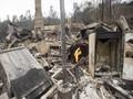 Kebakaran Hutan di California Hanguskan 1.400 Rumah