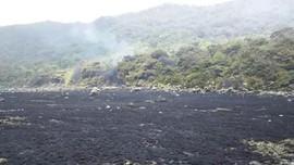 Kawasan Gunung Gede-Pangrango Terbakar