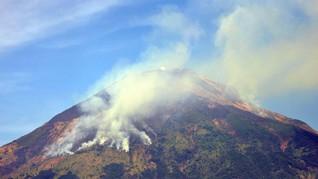 Kawasan Hutan di Gunung Sindoro Terbakar