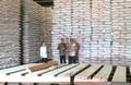 Harga Naik, Bulog Gelontorkan 300 Ribu Ton Beras ke Pasar