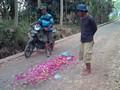 PPATK-KPK Diminta Dorong Polisi Usut Tuntas Kasus di Lumajang
