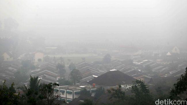 Luhut Enggan Beri Informasi Pembakar Hutan ke Singapura
