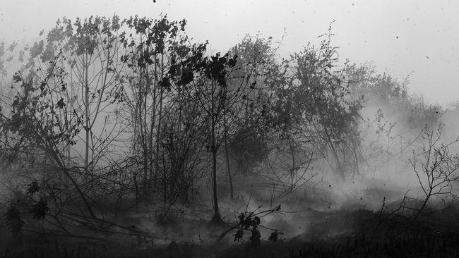 Kebakaran Hutan, Anak Usaha Sampoerna Agro Digugat Rp 1 T