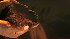 ESDM Larang Ekspor Bijih Mineral Secara Total pada 2022