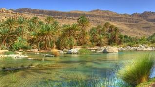 Rabu, KBRI Janjikan Solusi Tertahannya Anak Rizieq di Oman
